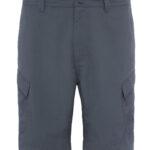 TNF Horizon Short Men_TOCF72_Asphalt Grey